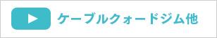動画:ケーブルクォードジム・カーディオ・ファンクショナル&ストレッチゾーン・ソニックス